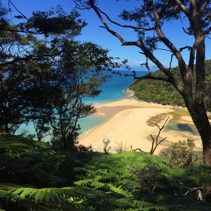 Every Beach In Abel Tasman National Park