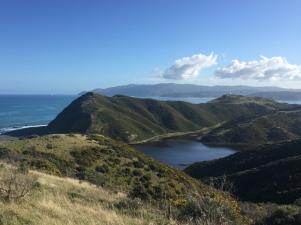 Lake Kohangapiripiri Wellington