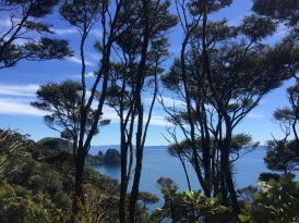 Sugarloaf Rock through the trees