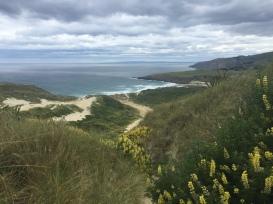 Sandfly Bay