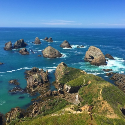 The 'nuggets' of Nugget Point