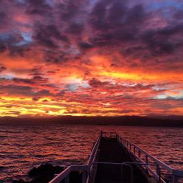 Karaka Bay sunrise