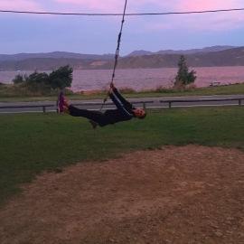 Worser Bay Tree Swing