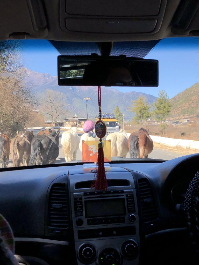 Paro traffic jam